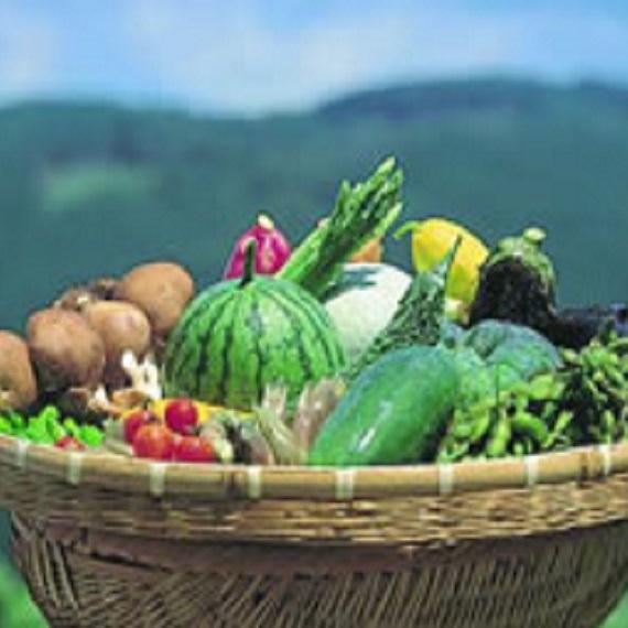 山遊里 下山特産品 野菜